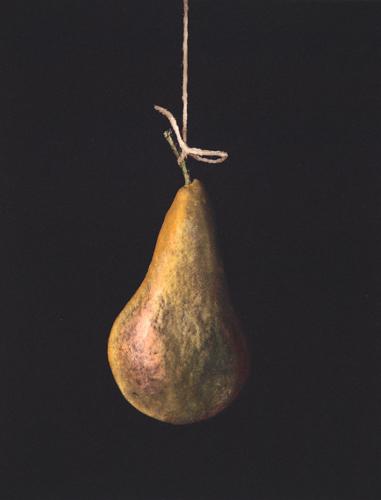 lowhangingfruit.lg